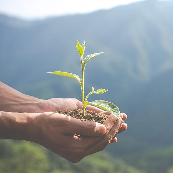 Környezet- és egészségbarát